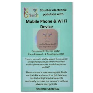 electronic mobile phone wifi protection